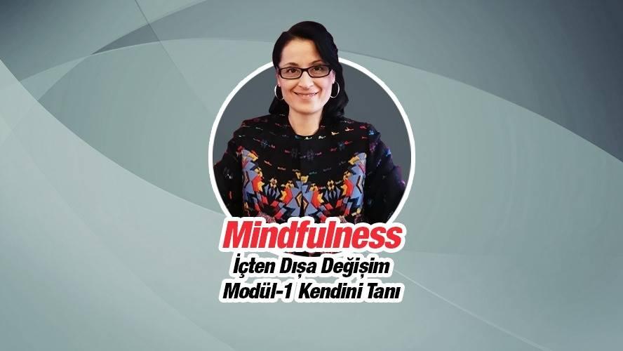 mindfulnessictendisadegisim